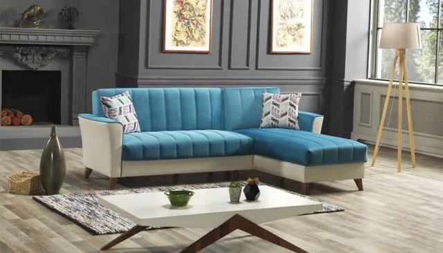 alya sectional